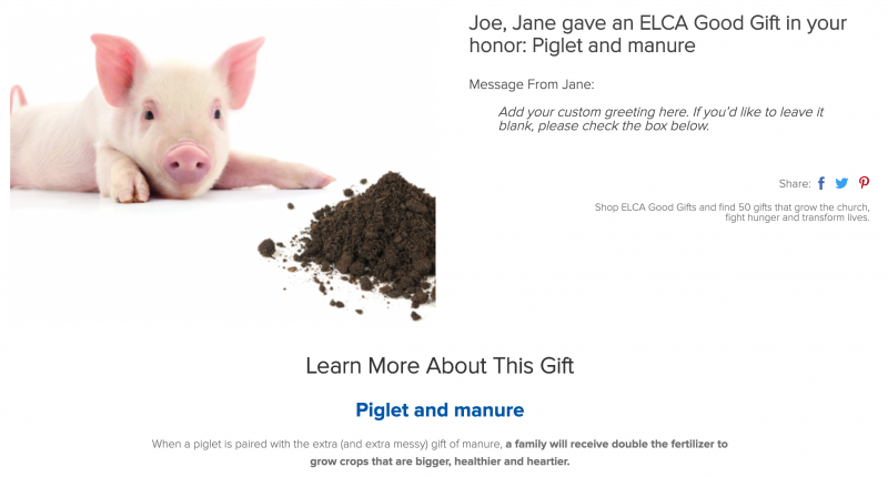 Piglet and manure