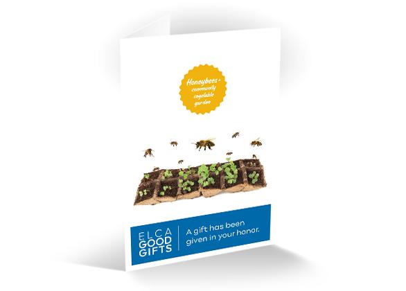 Honeybees and community vegetable garden