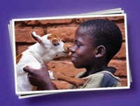 Child with goat thumbnail